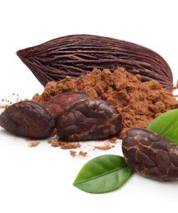 Schokoladen Pur ungefüllt
